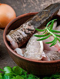 Piece of fresh raw fish Stock Image