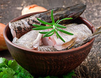 Piece of fresh raw fish Royalty Free Stock Images