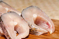 Piece of fresh raw fish. Stock Photography