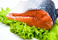 Piece of fresh salmon Royalty Free Stock Images