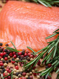 Piece fresh salmon with spices Stock Photos
