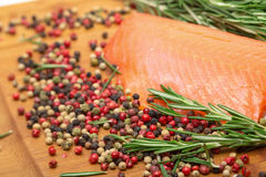 Piece fresh salmon with spices Stock Images