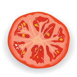 Piece of fresh tomato Stock Image
