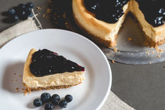 Piece of freshness delicious blueberry cheese cake on plate Stock Images