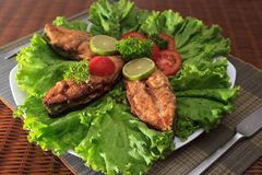 A piece of fried fish fillett served on blue glass table with lettuce, lime, tomato and herbs Royalty Free Stock Images