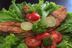 A piece of fried fish fillett served on blue glass table with lettuce, lime, tomato and herbs Stock Image