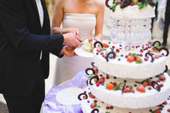 Piece of Fruit Cake. Bride and groom holding piece of extraordinary fruit cake Stock Photo