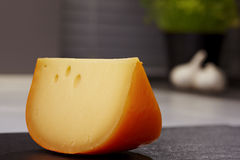 Piece of gouda cheese Royalty Free Stock Image