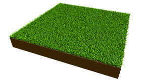 Piece of grass Stock Images