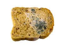 Piece of gray bread with blue and green mold isolated on white background Royalty Free Stock Photos