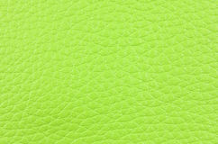 A piece of green natural leather Stock Images