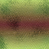 Piece of green reptile leather. Piece of green snake or lizard leather Royalty Free Stock Images