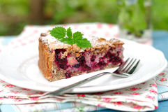 A piece of healthy wholemeal apple blackcurrant pie Royalty Free Stock Photo