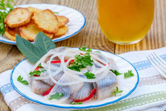 Piece of Herring,  Potato Chips, and Glass of Beer Stock Photo