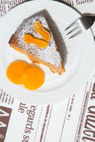 A piece of homemade apricot pie on the white plate. A piece of apricot pie, decorated by dried apricots on the white plate. The dessert served on the table cloth stock images