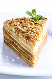 A piece of homemade cake napoleon Stock Photography