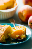 Piece of homemade peaches  pie Stock Image