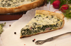 A piece of homemade pie with spinach Royalty Free Stock Images