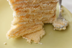 Piece of homemade tasty sponge cake with pastry cream Stock Photography
