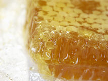 Piece of honey Royalty Free Stock Photography