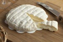 Piece of Italian Tuma dla Paja cheese Royalty Free Stock Photography