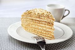 Piece of layer cake with custard and walnuts. On a plate Royalty Free Stock Photo