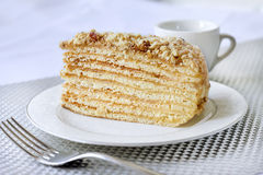 Piece of layer cake with custard and walnuts. On a plate Royalty Free Stock Photography