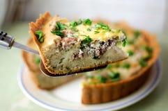 Piece of meat pie Stock Photos