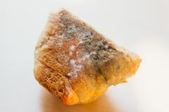 Piece of moldy bread on light background. Food not suitable for consumption stock images