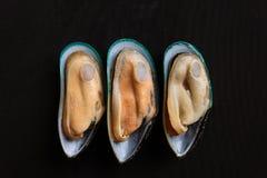 Piece of mussel Stock Photos