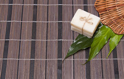 Piece of natural soap Stock Images