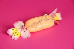 Piece of the new soap attached by twine and flower Stock Photography