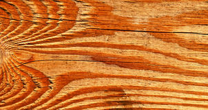 Piece of old vein wood Royalty Free Stock Photo