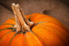 A piece of orange pumpkins on sackcloth. Royalty Free Stock Photography