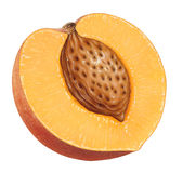 Piece of Peach Stock Photography