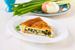Piece of pie with chopped green spring onions Royalty Free Stock Photo
