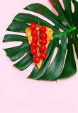 Piece pizza slice pink background yellow green vegetables veg greens tomatoes monstera tropic. Slice of pizza on a pink background with greens and tomatoes royalty free stock photos