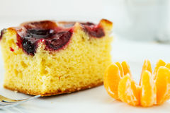 Piece of plum cake Stock Image