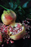 Piece of Pomegranate on Black Background Royalty Free Stock Image