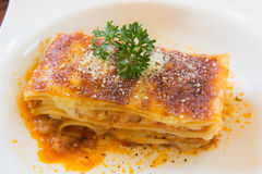 A Piece of pork and tuna Lasagna with parsley, close up. A Piece of pork and tuna Lasagna, close up Stock Image