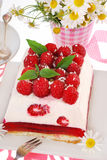 Piece of raspberry cake with jelly Royalty Free Stock Photo
