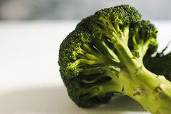 Piece of raw broccoli on white wood. Close up Stock Image