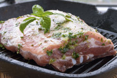 Piece of raw marinated meat in a pan-grill. Piece of raw meat marinated with herbs, garlic and vegetable oil in a pan-grill Royalty Free Stock Images