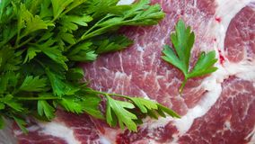 A piece of raw meat. stock images