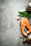 Piece of raw salmon with spices and herbs. . Royalty Free Stock Photo