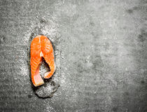 Piece of raw trout with salt. Stock Image