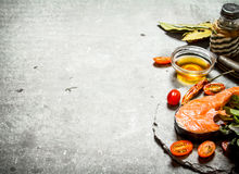 Piece of raw trout and tomatoes. Stock Image