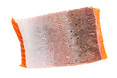 Piece of red fish Stock Photography