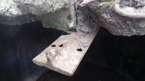 Piece of rusty iron. Coming out from inside a rock in a cave stock photography