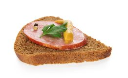 Piece of rye bread with sausage and the spices Stock Photography